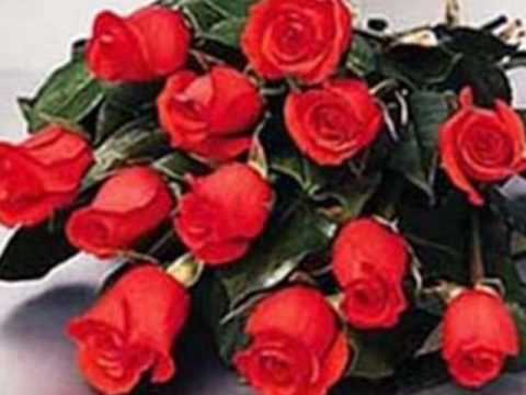 Richard Clayderman Lady in Red.wmv Music Videos
