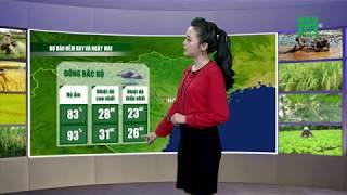 Thời tiết nông vụ 18/09/2018: Lưu ý với bà con trồng chè | VTC14