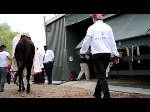 Preakness: Orb at Pimlico, 5/16/2013