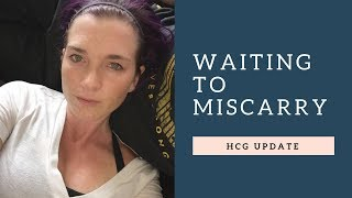 HCG Update || Waiting To Miscarry || 4th Miscarriage