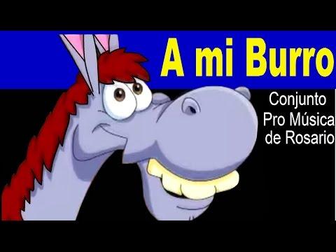 A MI BURRO - Conjunto pro musica de Rosario