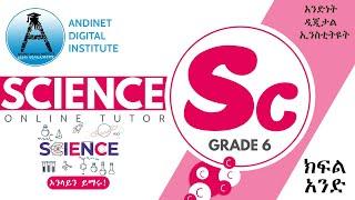የስድስተኛ ክፍል ሳይንስ ትምህርት - Lesson 1 - Science For Grade 6.