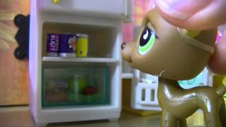 ❀ LPS: Behind the Scenes (Café)