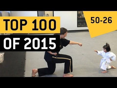 Top 100 Viral Videos Of 2015 || JukinVideo (Part 3)