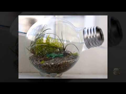 Как сделать перечницу из лампочки
