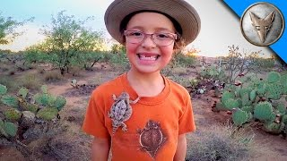 Brave Wilderness | Horned Lizards in Our Backyard!