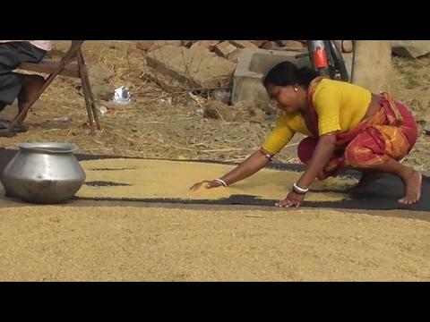 Rural Women Working
