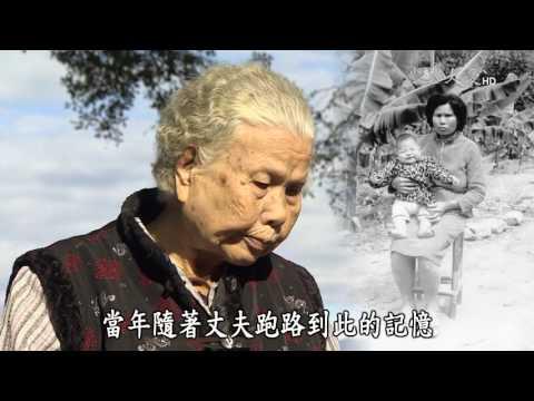 台灣-紀錄新發現