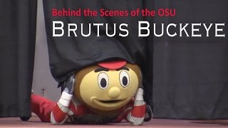 Behind the Scenes of OSU - Brutus Buckeye