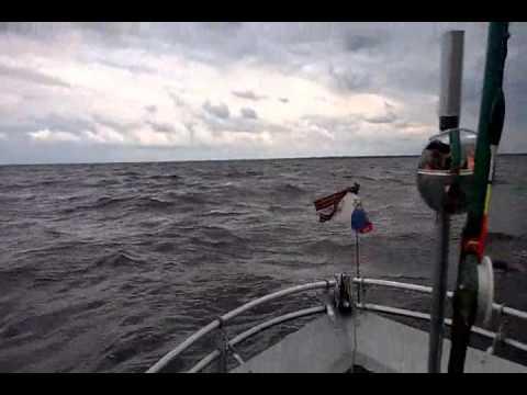 рыбалка на кубенском озере форум сорога ру