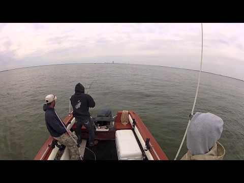 STRIPER FISHING - Upper Delaware Bay Fishing Is On Fire