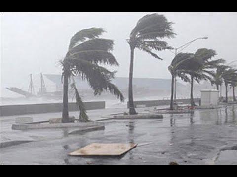 В США прогнозируют катастрофическое наводнение из-за урагана Харви