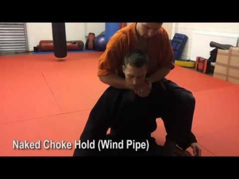 Kykyoku ry ju-jitsu - Throws, locks, submissions, take downs (Orange and Green Belt) Image 1