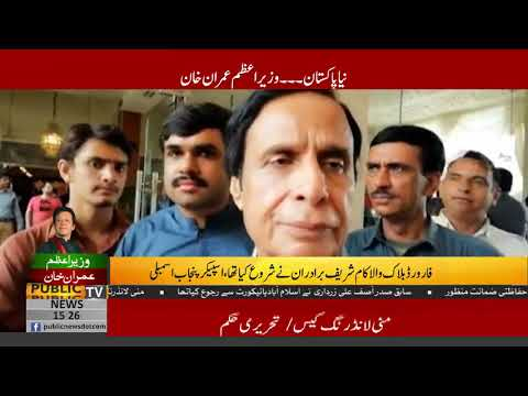 Imran Khan nominated me, will extend full support to him: Pervez Elahi | Public News