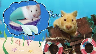 Hamsters Finding Mermaid Ariel in The Undersea Adventure !! Master Hamster by Life of Pet Hamham