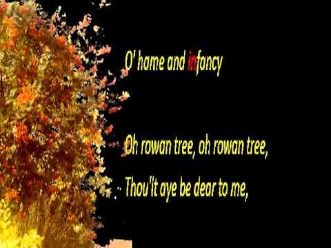 Oh Rowan Tree Melody Thomascow