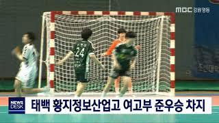 '제16회 태백산기 전국종합핸드볼대회' 마무리