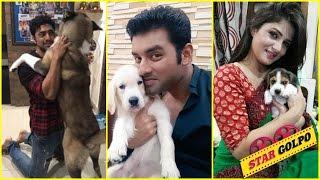 ৮ টলিউডের স্টারদের পোষা প্রানিদের প্রেম   8 Bengali Stars Love For Their Pets Have Won Our Hearts