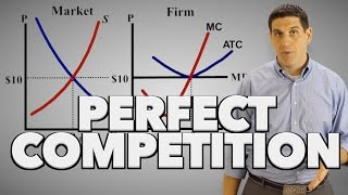 Perfect Competition in the Short Run- Microeconomics Topic 3.7 (1 of 2)