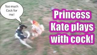 Princess Kate Plays with Cock