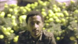 Kibrom ft Haimanot - Fikir Endekirar ፍቅር እንደ ክራር (Amharic)