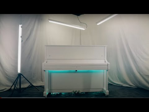Airport Piano by Tim Minchin (Official Video)