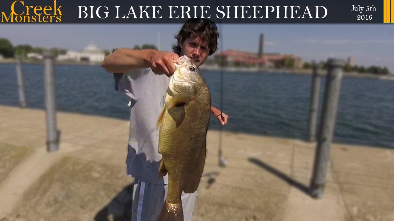 Big lake erie sheephead bird island pier buffalo ny for Lake erie pier fishing