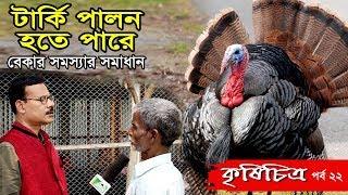 কৃষি চিত্র-পর্ব ২২ Turkey Farming-,টার্কি পালন হতে পারে বেকার সমস্যার সমাধান