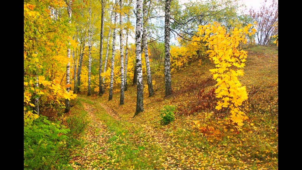 Презентация на тему осень с музыкой 12 фотография
