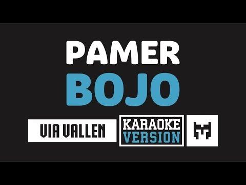 Download  Karaoke  Via Vallen - Pamer Bojo Reggae Koplo Mp4 baru