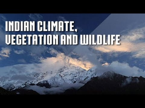 Indian Climate, Vegetation and Wildlife | Class 6 Geography
