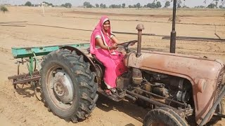 GOOD lady driver drive old massey tractor //लगा दिया pata ज़मीन पर in agriculture farm