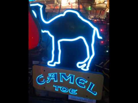 Camel Toe Song! video
