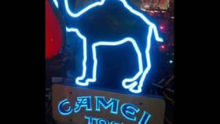 Camel Toe Song!