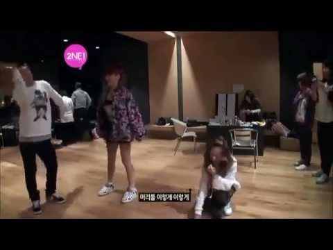 2NE1 Sandara Park Funny &amp; Cute Moments