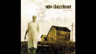 Watch Buzzhorn Holy Man video