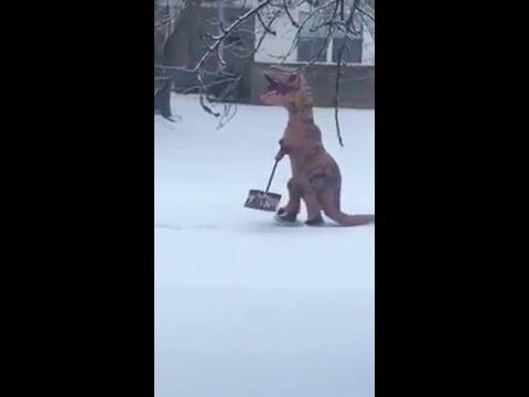 雪かきをするのはT.rex ?!