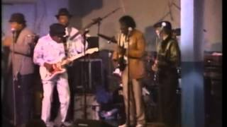 Albert Collins & Buddy Guy - Guitar Duel