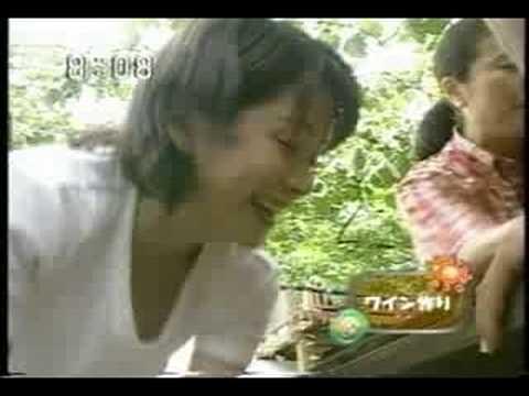 女子アナ内田恭子のお宝な胸チラ