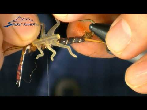 Bug Partz Stonefly  Fly Tying - Spirit River