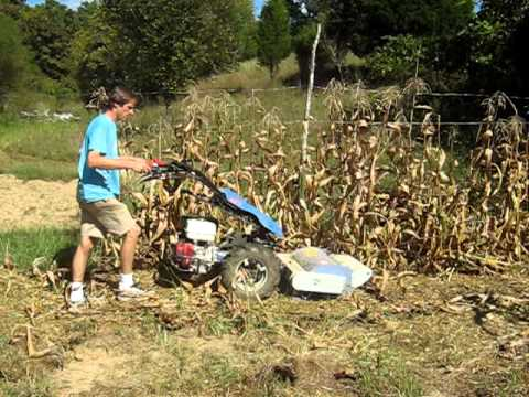 BCS 853 & Berta Flail mower cutting old cornstalks.avi