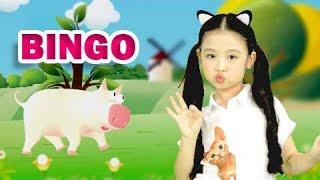 Bingo - Quả Gì - Mẹ Đi Vắng- Gà Gáy - Gà Trống Mèo Con Và Cún Con🌸Liên Khúc Nhạc Thiếu Nhi Bảo Ngọc