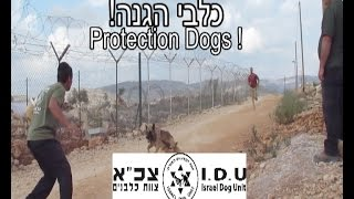 Israel Civilian K9 Unit - Security dogs