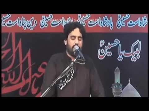 Shahdat Bimar e Karbala | 25 Muharam | Zakir Waseem Abbas Baloch