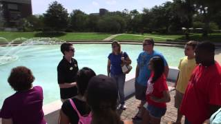 Welcome to UCF – Undergraduate Admissions
