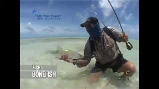 Big Bonefish: fly fishing seychelles