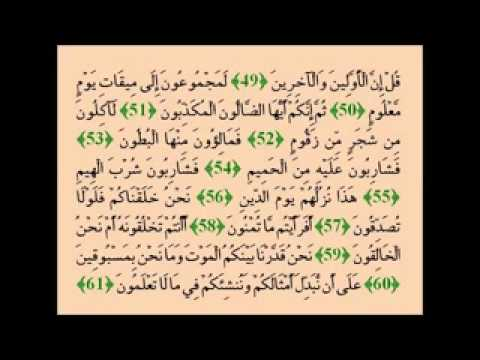 Muhammad Taha Al-junayd- Surah Al-waqi'ah video