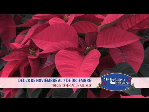 13a Feria de la Nochebuena - Atlixco