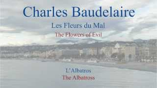 French Poem - L'Albatros by Charles Baudelaire -  Slow Reading