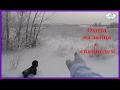 Астана Охота на зайца с спаниелем